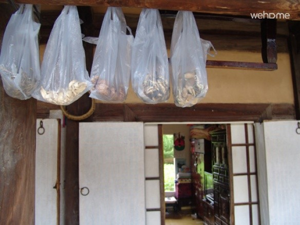 Gaondang munganbang room_7