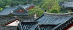 GANGNAM ECONOMY DOUBLE SUITE (2 ppl)