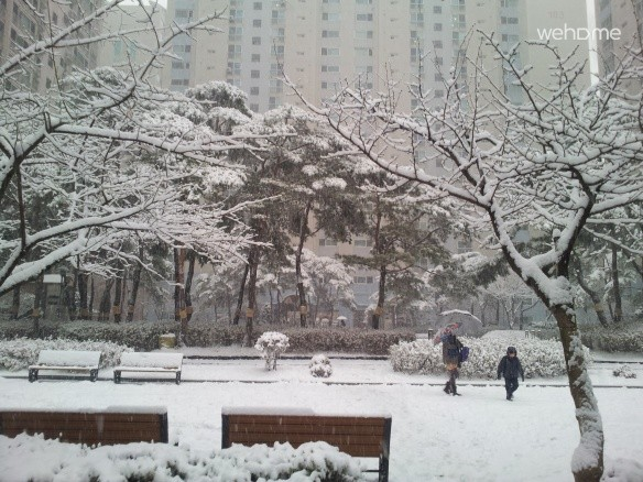 Gangnam area,clean, safe and comfortable