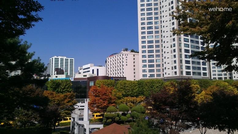 [Suwon] Lovely & Sweet Studio In Suwon. SongAk Whitevile Deluxe ParkView