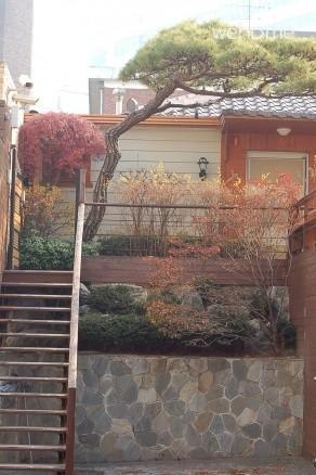 cosy room with beautiful garden / best location