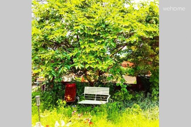 Spacious Garden+Center+2BR+View+Nature