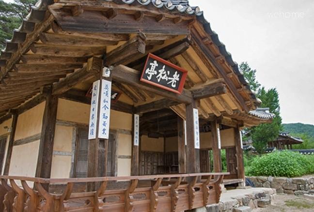 Cypress jeongjongtaek (Toegye taesil) - Big Love