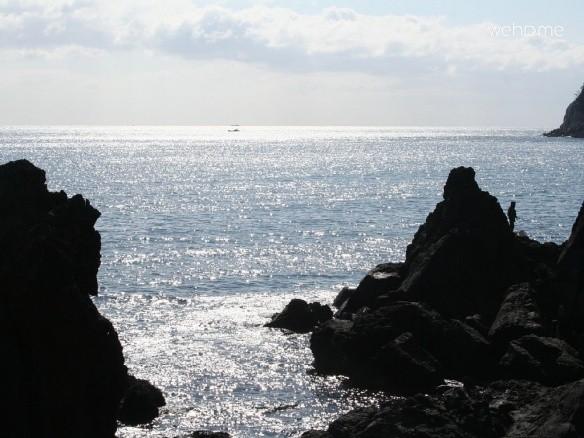 Private Ocean Front Jeju Island Getaway