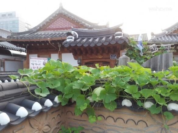 [Jeonju Hanok Village] Bakgane Pyojubak