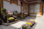 Special healing of physical and mental regeneration, healing Taoyuan Chung House - Wildflower room (