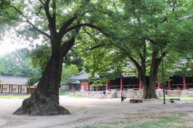 韩屋的故事,风景(dokchae)
