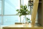 Resum House #S3 Eco-Friendly ☆NEW OPEN☆