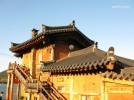 Elecampane Pensions Goseong-Chungsong